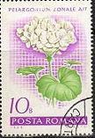ゼラニウムの切手
