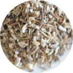 エキナセア angustifolia 種の最新追加情報
