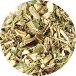 エキナセアのPurpureaの葉類を購入されるときのご注意