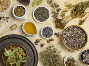 ウイルス感染予防と対処支援の植物療法の役割と限界